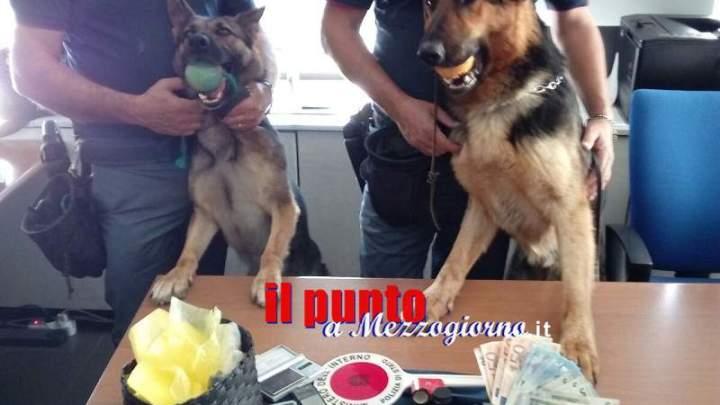 Frosinone : la Polizia di Stato mette a segno un altro colpo contro il mercato dello spaccio