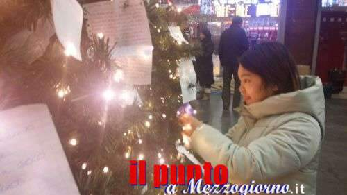 L'albero di Natale che raccoglie i desideri e intrattiene i viaggiatori