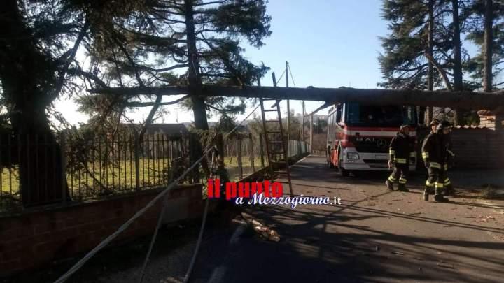 Maltempo a Velletri, alberi caduti causano black out