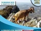 """""""A Spasso Col Pastore"""": camminare lentamente alla scoperta dei Monti Aurunci"""