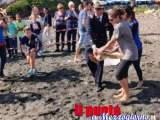 La tartaruga Aprea torna in mare a Ventotene