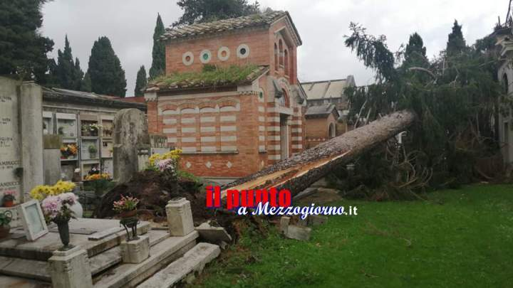 Maltempo di Natale a Velletri, raffiche di vento abbattono alberi nel cimitero e nei parchi pubblici