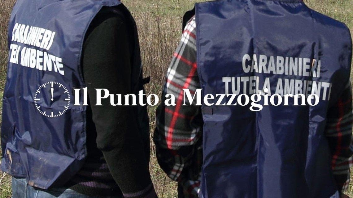 Concussione e corruzione per la discarica di Monte Carnevale a Roma, arrestato Lozza