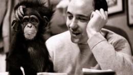 La scimmia nuda studio sull'uomo