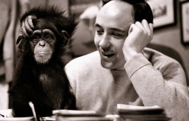 """La scimmia nuda """"balla"""" dalla mente di un geniale zoologo del novecento al palco dell'Ariston"""