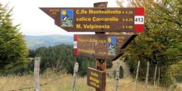Colle Mittiga - 1678 mt nel cuore del Parco Nazionale della Sila - ph Gianluca Congi ©