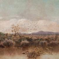 La Pinacoteca di Bari celebra la Giornata nazionale del Paesaggio