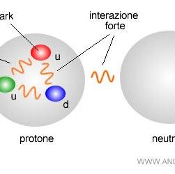 Fisica delle particelle: quark, gluoni e neutrini, sappiamo realmente cosa sono?