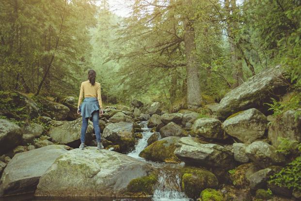 Il contatto con la natura come Jon Snow: i benefici dello Shinrin-yoku
