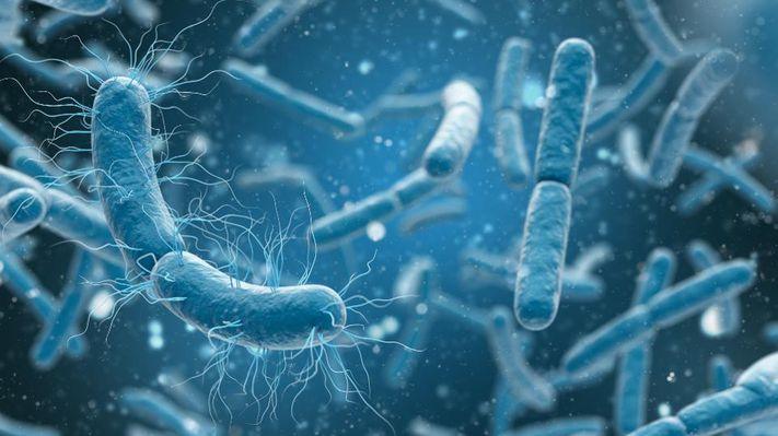 Uomo contro Batteri: un eterno scontro a colpi di antibiotico