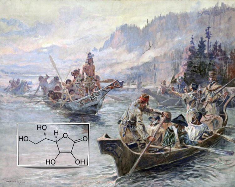 Malattie millenarie: dagli Egiziani a Luigi IX, una piaga chiamata scorbuto.