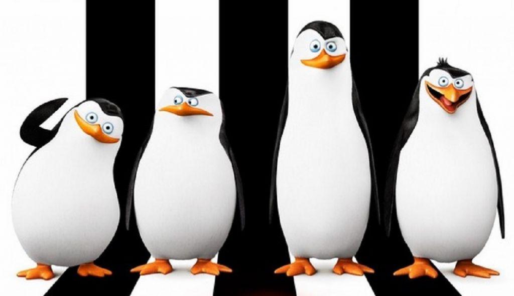 I pinguini usano la sintassi: ricostruzioni linguistiche come per il proto-latino di Romolo.