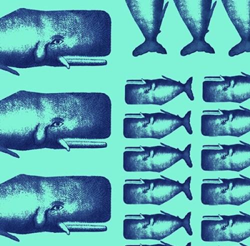 Moby Dick nell'intelligibilità Spinoziana: l'ossessione verso l'ignoto sottoposta alla verità utile