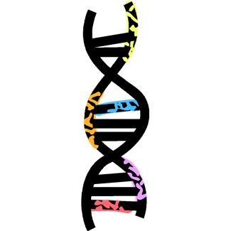 Vincere le Olimpiadi con una rara malattia genetica? È tutta questione di eritropoietina