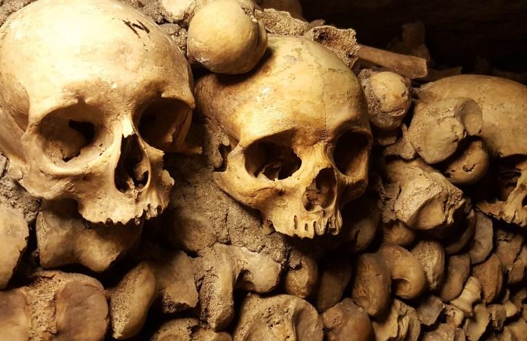 Scienza e storia connesse per comprendere il passato: ecco cosa abbiamo capito delle civiltà precolombiane
