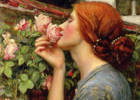 Il profumo: analizziamo la dimensiome olfattiva evocata da Süskind attraverso Platone ed Aristotele