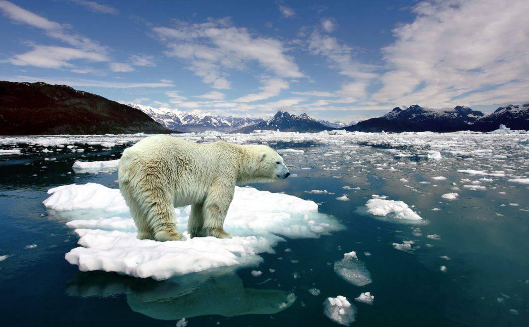 25 Settembre: Giornata mondiale di azione per la giustizia climatica. Anche l'Ecopoesia di Baudelaire e di Caproni  può salvare il pianeta?