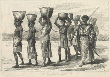 Sono schiavi, dunque uomini: ecco lo studio del patrimonio genetico degli afroamericani