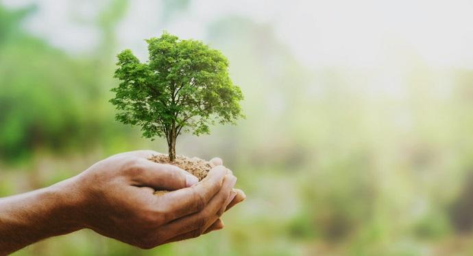 Milano ben figura nei progetti eco-sostenibili: il progresso che Parini auspicava già anni fa