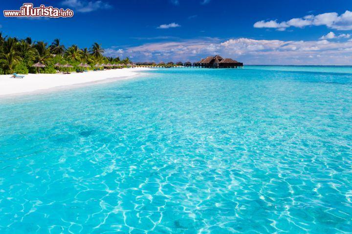 Acqua azzurra spiaggia di sabbia bianca palme   Foto