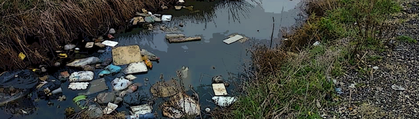canale rifiuti ardea