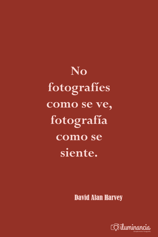 David Alan Harvey en citas sobre fotografía