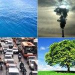 Sustentabilidad, lo que debemos tener en cuenta