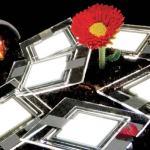 OLEDs blancos pueden superar a los LEDs