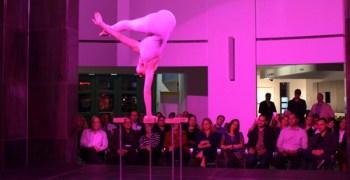 cirque-iald-enlighten-americas