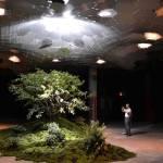 Un vistazo al futuro: Jardines subterráneos con luz del sol