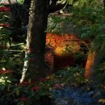 El Jardín de la Antigua Villa Santa Mónica revive con luz