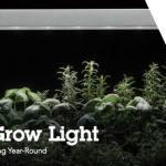 LED Grow Light de Lithonia Lighting