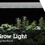 LED Grow Light de Lithonia Lighting