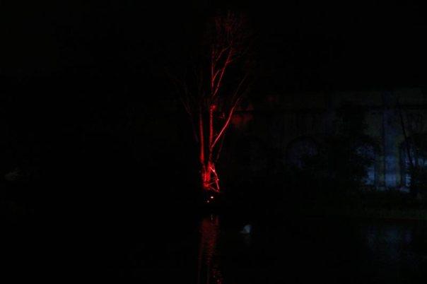 luz-arquitectura-rio-blanco-17