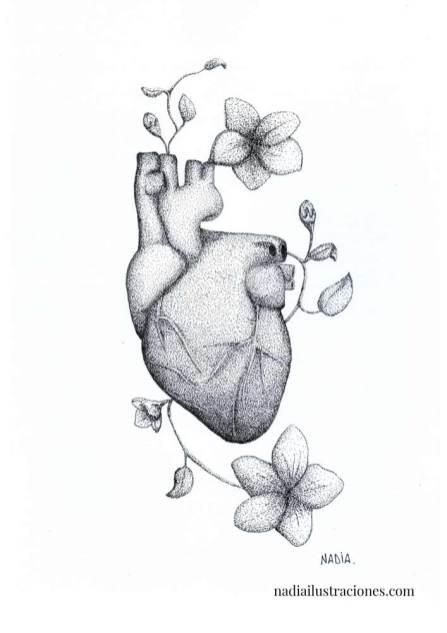 nadia-batalla-ilustraciones-07