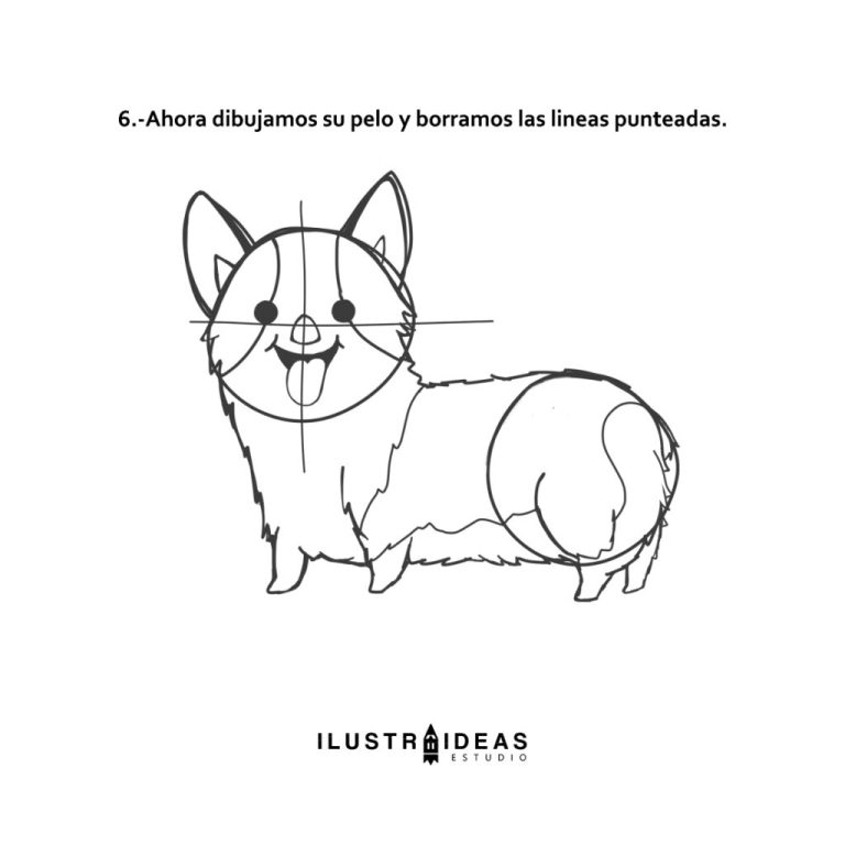 how to draw a corgi potter