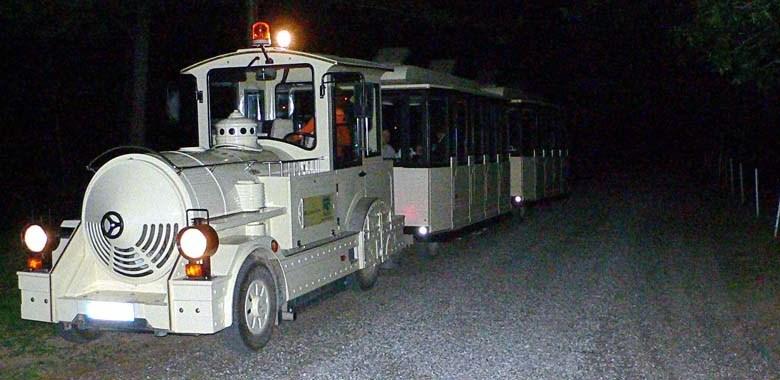 Parco della Mandria trenino