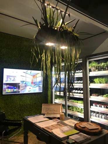 Orto hi-tech, una smart vegetable library. Massimiliano mandarini