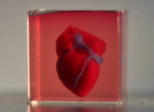 cuore 3d