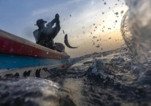 "pescatore, ""A pesca di Plastica"""