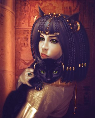 gatto nero