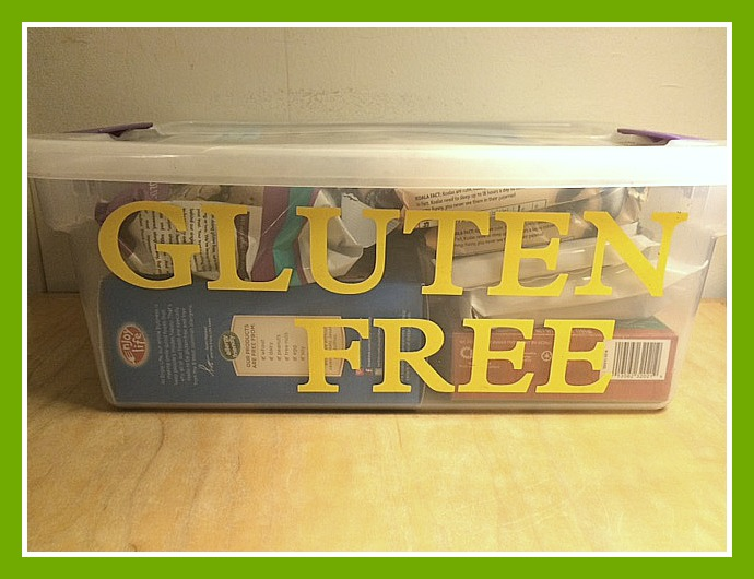 Sending Gluten Free Kids to Summer Camp