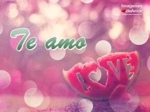 imagenes con frases romanticas para enamorados - frase te amo