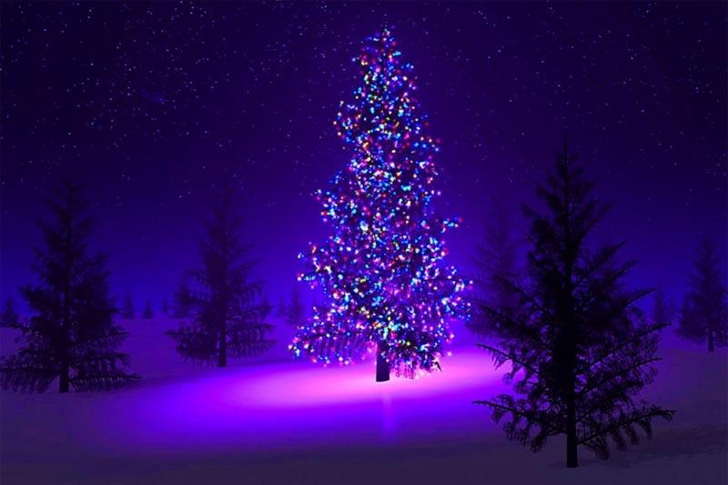 Imágenes Árbol de Navidad: árbol Navidad Adornado