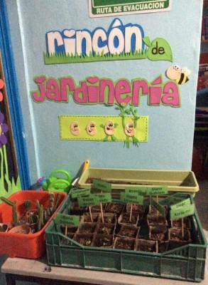 Primavera Rincones (9)