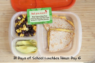 Almuerzos saludables para niñ@s (24)