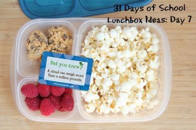 Almuerzos saludables para niñ@s (25)