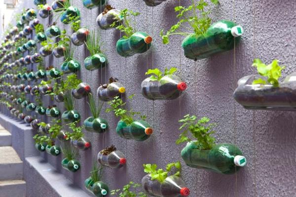 huerto escolar botellas plastico y otros materiales reciclados