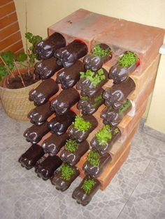 Huerto escolar botellas plastico y otros materiales reciclados (11)