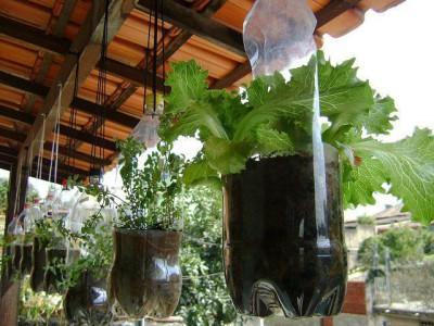 Huerto escolar botellas plastico y otros materiales reciclados (13)